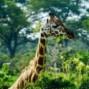 Tanzania y Etnias