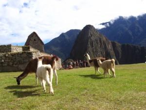 Siete datos curiosos que te harán viajar a Perú
