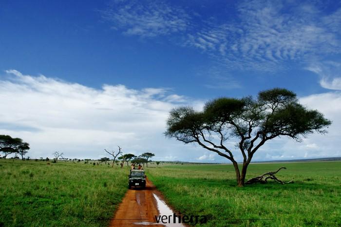 Viajar a Tanzania: en busca del paraíso animal
