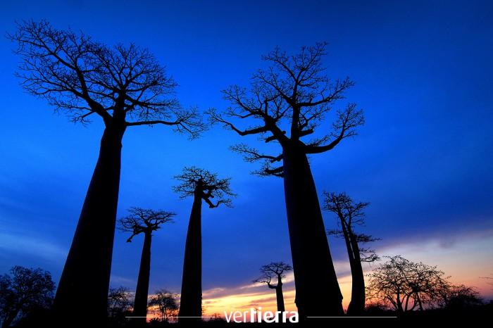 Viajar a Madagascar: un paraíso natural lleno de contrastes