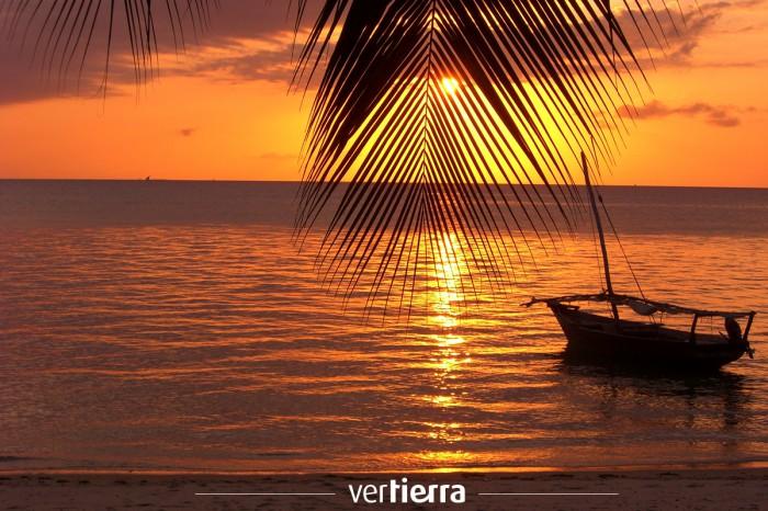 Nuestra oferta de primavera: minisafari en Tanzania y relax en Zanzíbar