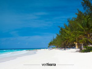 viajar a Barbados