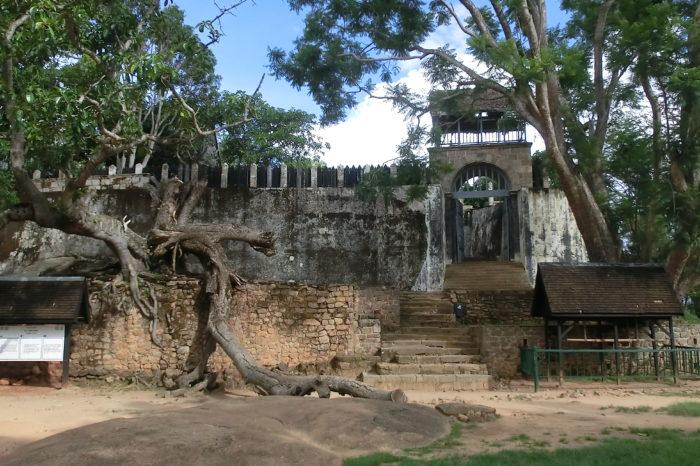 5 lugares de Madagascar completamente impresionantes (y variados)